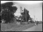 Shamrock Cottage, Selwyn Road, Howick, Manukau Cit...